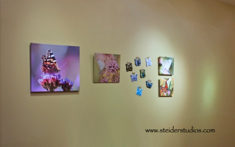 Steider Studios: Installation Preview for Solo Show at The Nook