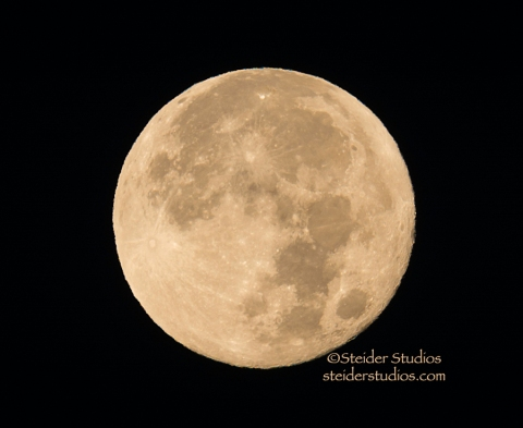 Steider Studios.Full Moon 11.6.14